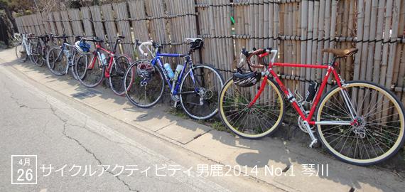 CAO2014_01