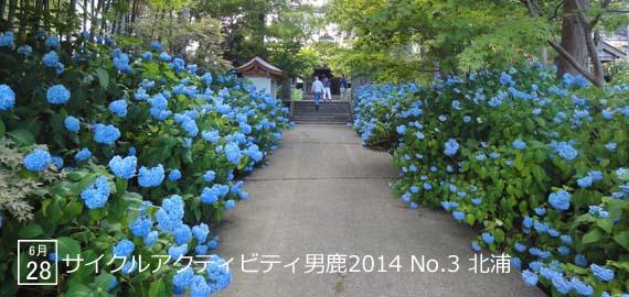 CAO2014_03